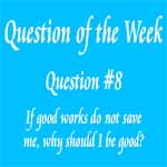 Question of the Week #8