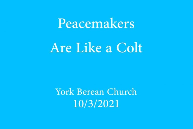 Peacemakers are like a colt